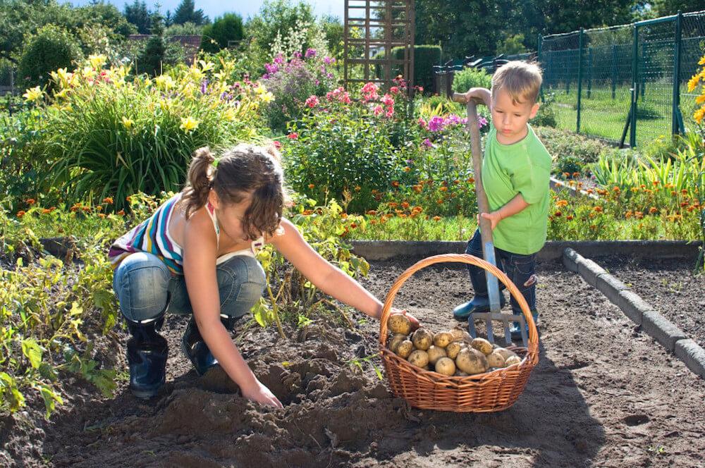 ชวนเด็กทำสวน
